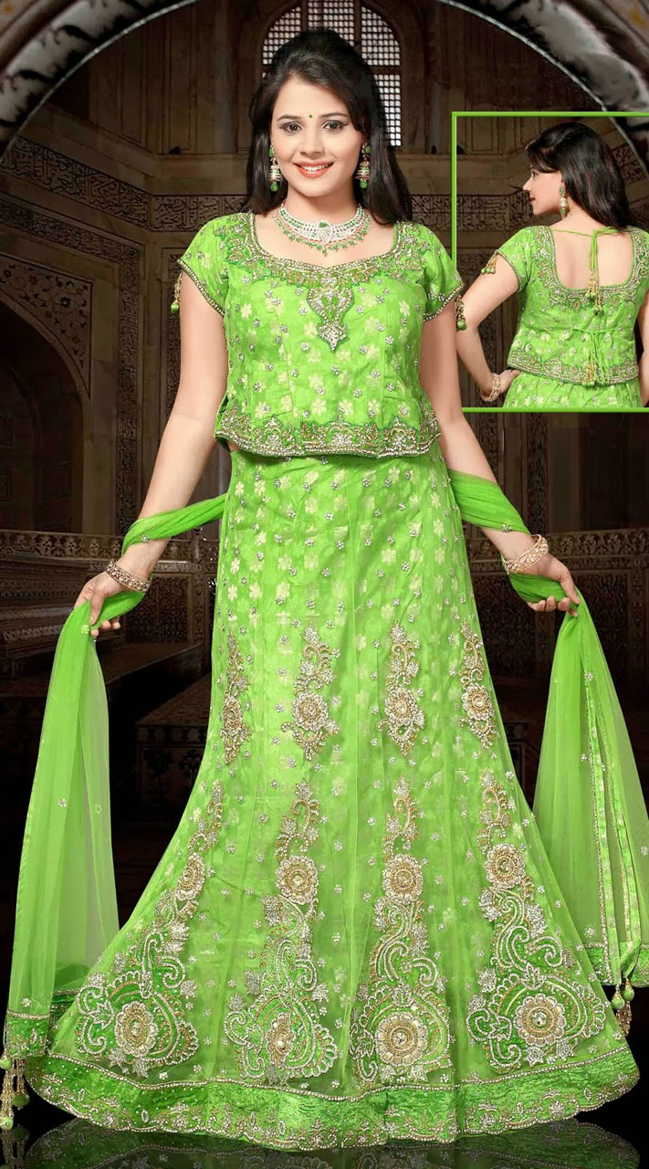 Light Green Net Embroidered Lehenga Choli With Dupatta Dt92739