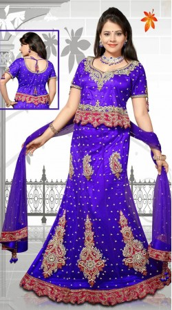 Beautiful Blue Net Embroidered Lehenga Choli With Dupatta DT92339