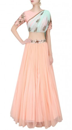 Beauty Creation Net Light Peach Lehenga With Designer Choli SUUDL21319