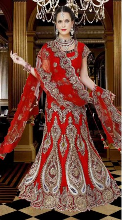Fashionable Red Net Embroidered Semi Bridal Lehenga Choli DTL845