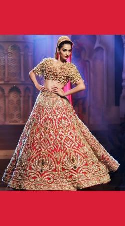 Graceful Heavy Work Red Indian Dress Bridal Lehenga Choli