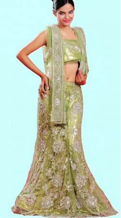 LD0401 Gorgeous Light Olive Green Net Lehenga Choli