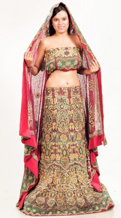 LD2801 Luscious Multicolor pure crape Lehenga Choli