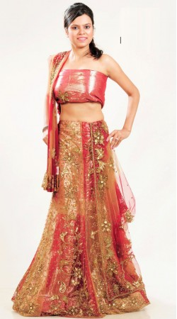 LD4101 Luscious Beige And Pinkish Red Net Lehenga Choli