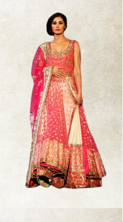 Well Proportioned Pink Net Nargis Fakhri Long Choli Lehenga BP2423
