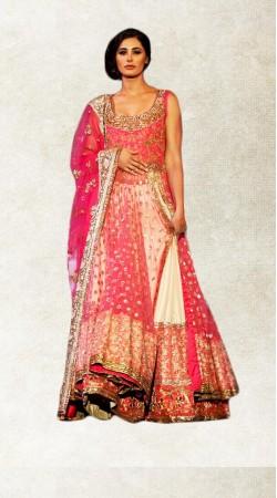 Well Proportioned Pink Net Nargis Fakhri Long Choli Lehenga BP2423