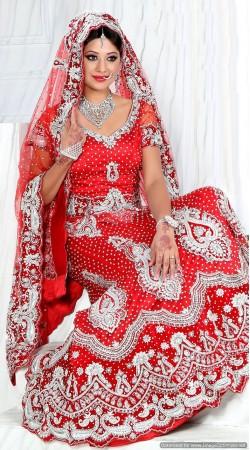 RB326003 Bright Red Bridal Net Lehenga Choli