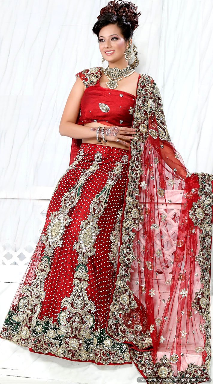 Red Bridal Net Lehenga Choli
