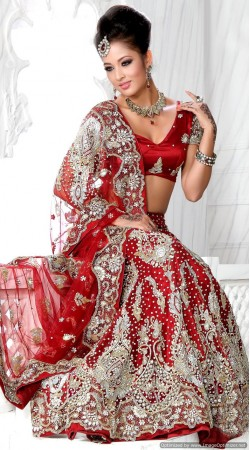 RB326026 Red Bridal Net Lehenga Choli