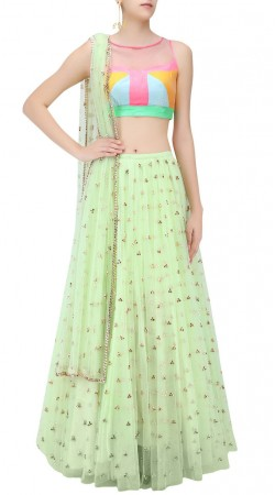 Seasons Special Light Green Rose Net Lehenga With Contrast Choli SUUDL20119