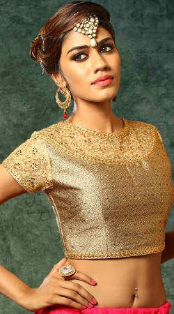 Embroidery Work Golden Net Designer Blouse