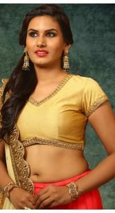 Golden Brocade Designer Blouse For Saree