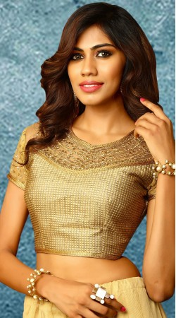 Golden U Neck Embroidery Work Blouse