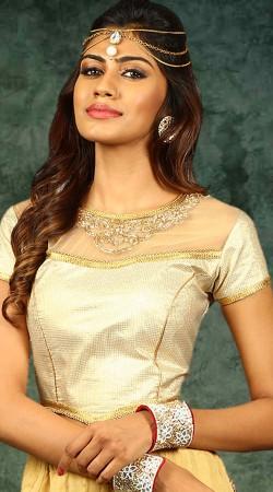 Silver Lace Work Golden Net Blouse